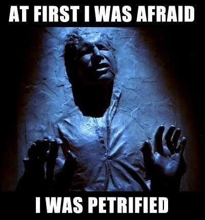 Han Solo Meme Star Wars At First I was Afraid I was Petrified